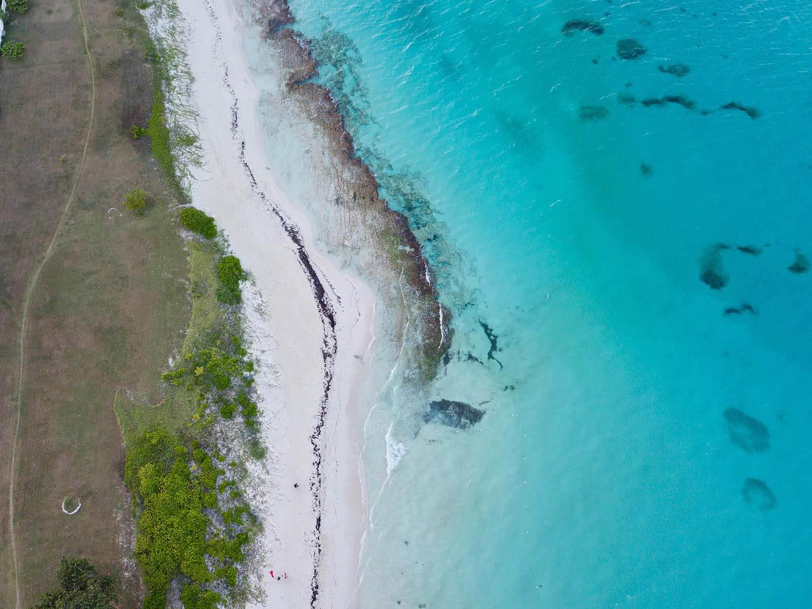 Castaways Jamaica beach